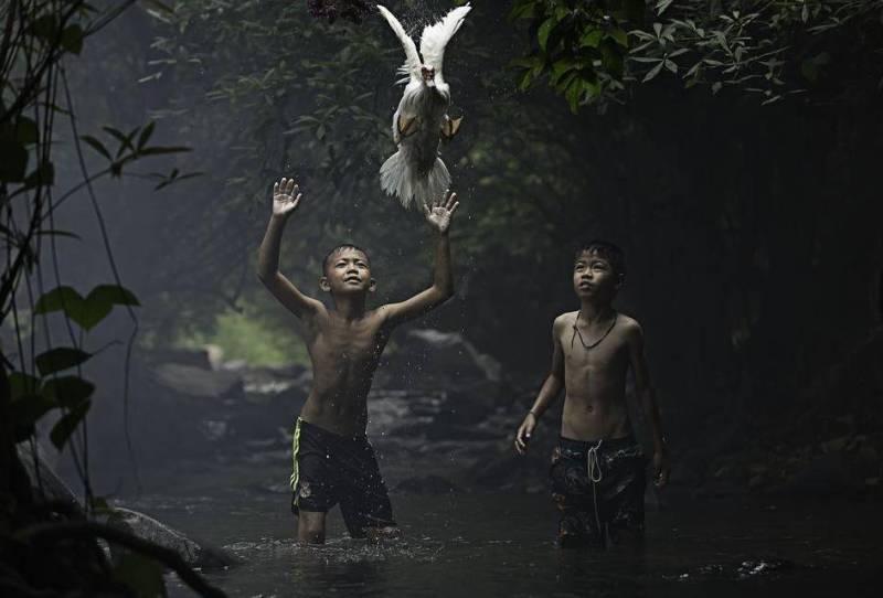 """Ловля утки в Таиланде"". Sarah Wouters."
