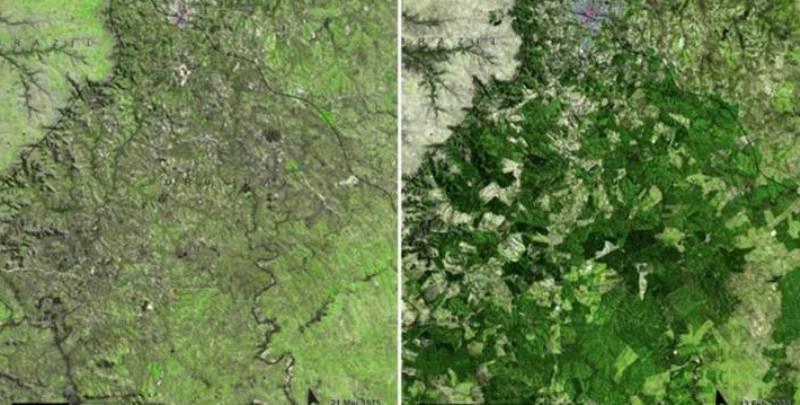 глобальное потепление фото с космоса