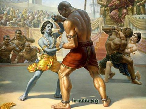 Krishna Fighting