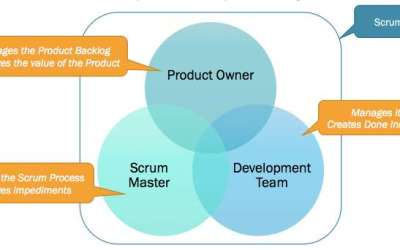 How do the 3 Scrum Roles Promote Self-organization?