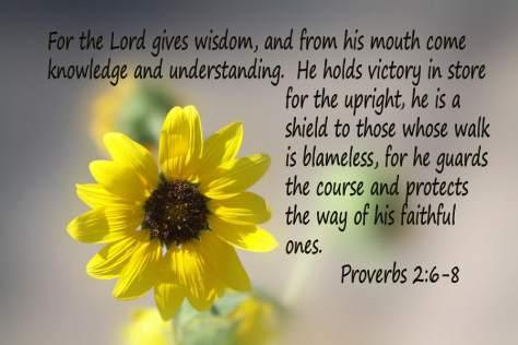 scripture-sunflower-ps-2-v-6-8-linda-phelps