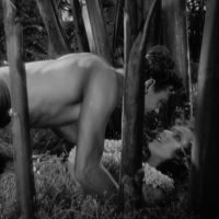 Bird of Paradise (1932) Review, with Joel McCrea and Dolores del Rio