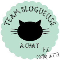 Logo Team Blogueuse à chat