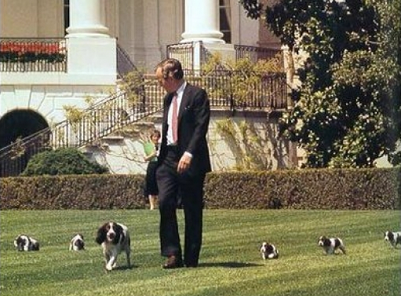 President George Bush with Millie and puppies, April 20, 1989.