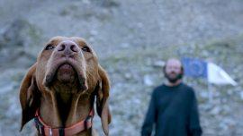Blutgletscher-©-2013-Allegro-Filmverleih-(6)