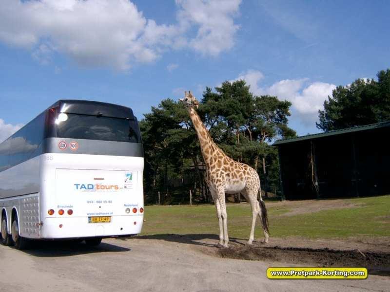 Safaripark Beekse Bergen autosafari korting trip report blog 1