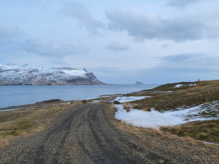 fjord islande roadtrip