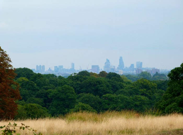 skyline londres richmond park