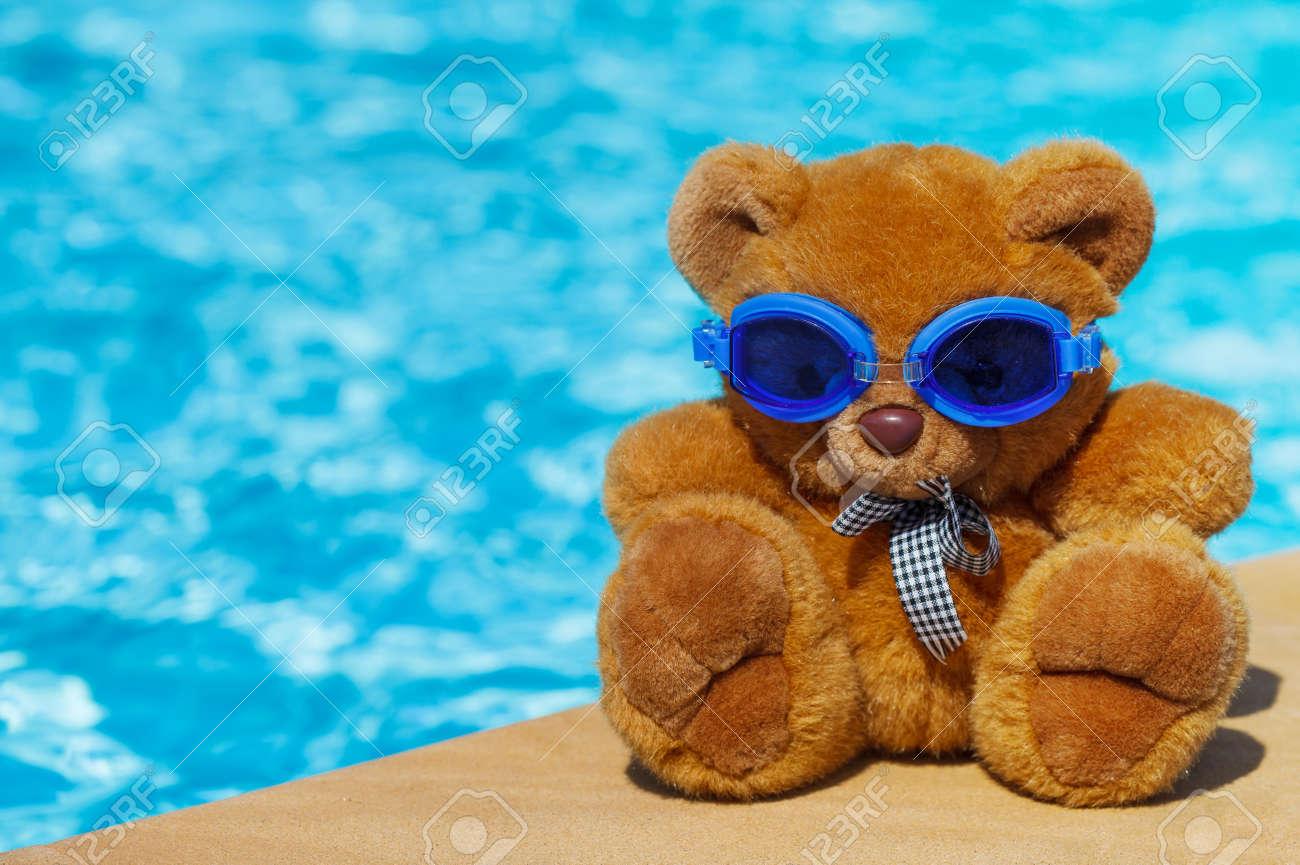 Gorgeous Swimming Teddy Bear S Reviews Teddy Bear S Baseball 17993013 Teddy Bear A Stuffed Toy Bear houzz-02 Teddy Bear Pools