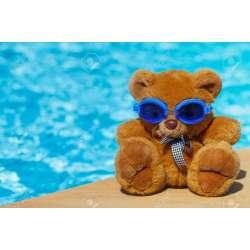 Small Crop Of Teddy Bear Pools