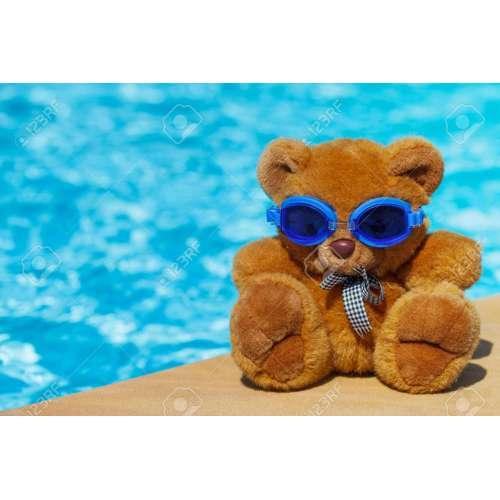 Medium Crop Of Teddy Bear Pools