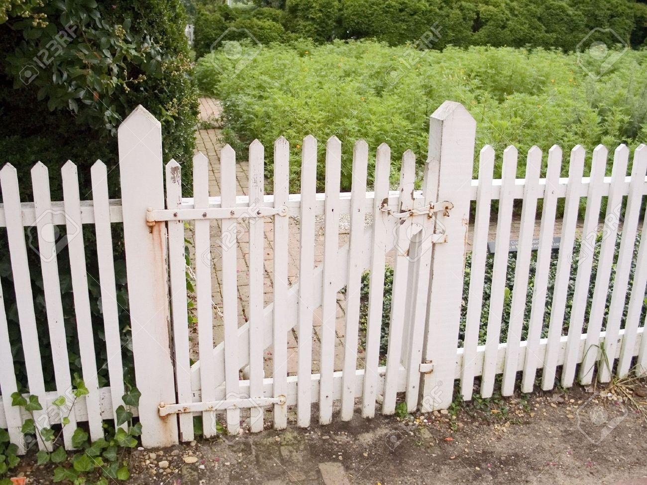 Relieving Garden Stock Photo An Picket Fence An Picket Fence Picket Fence Gate Installation Picket Fence Gate Hinges Garden Stock houzz-03 Picket Fence Gate