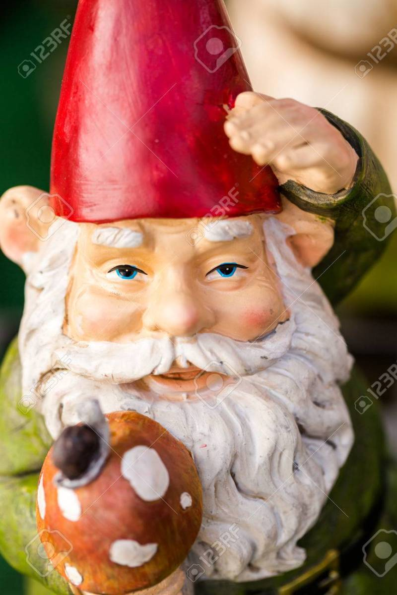 Deluxe Private Stock Private Stock Photo Small Garden Gnomes Small Garden Gnomes Small Garden Gnomes Asda Cheap Small Garden Gnomes