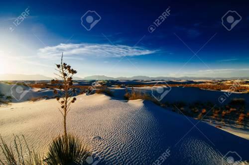 Medium Of New Mexico Landscape