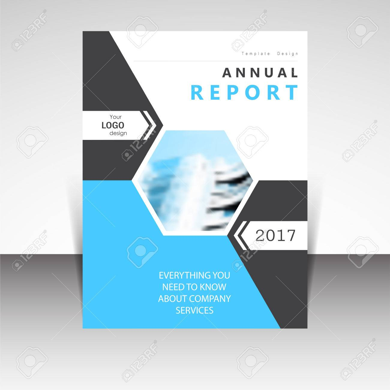 Business Annual Report Brochure Design Vector Illustration  Business     Business annual report brochure design vector illustration  Business  presentation  poster  cover  booklet