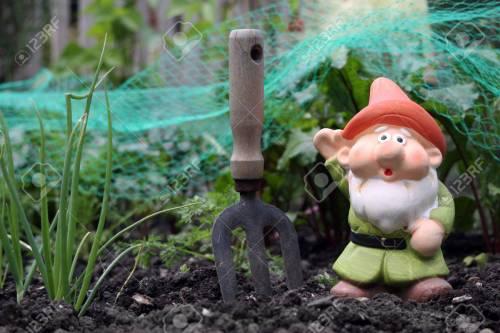 Medium Of Small Garden Gnome