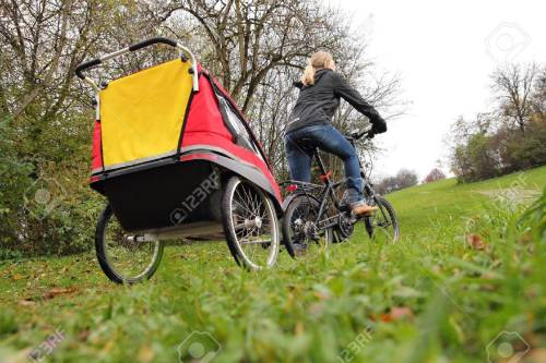 Medium Of Child Bike Trailer
