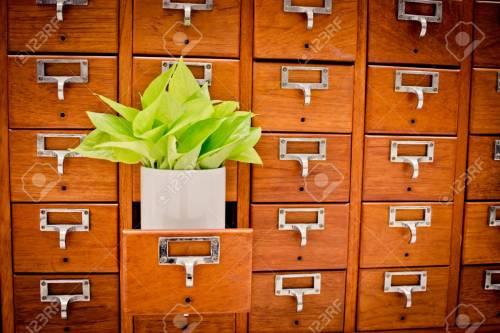 Medium Of Card Catalog Cabinet