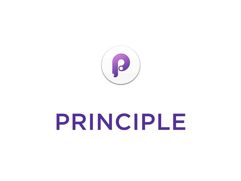 principle-type