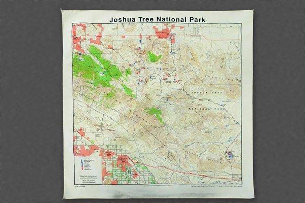 Joshua tree bandana
