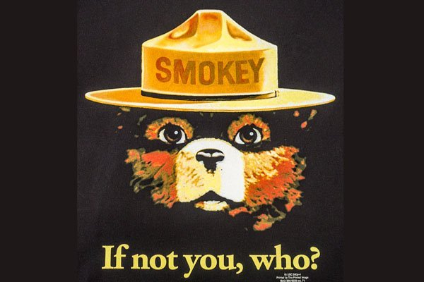 Smokey bear screen print