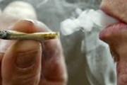 Kapet me narkotikë në Vërmicë