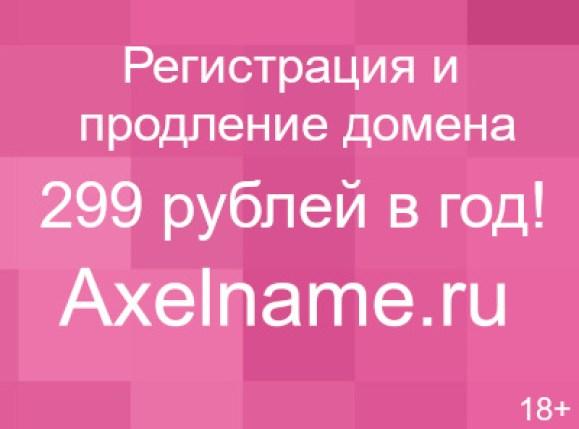 1423480262_master-klass-risuem-sherstju9