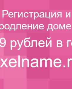 shema-primer