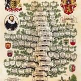 Stammbaum Familie Schickhardt