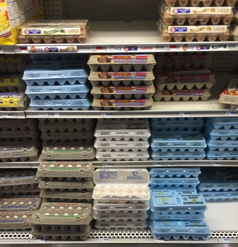 Large Of Price Of Eggs
