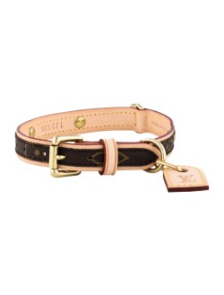 Small Of Louis Vuitton Dog Collar