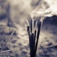 Exclusive Recipe: Incense Sticks on Toast!