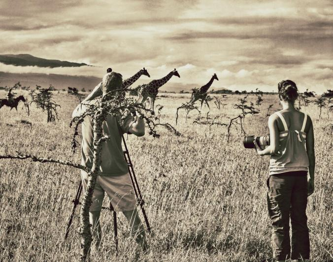 Filming giraffes in Kenya