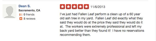professional tree service Rocklin ca