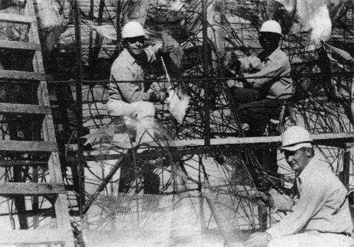 The first step in forming the new rock is to bend iron rods into the general shape desired. Then a steel mesh is attached to the rods. A cement stucco is then spread over the mesh to give the rock-like appearance. Above are Thomas Bothell (top, left), Leo Waldon (top, right) and Jack Tomes (bottom) attaching mesh over the rods.