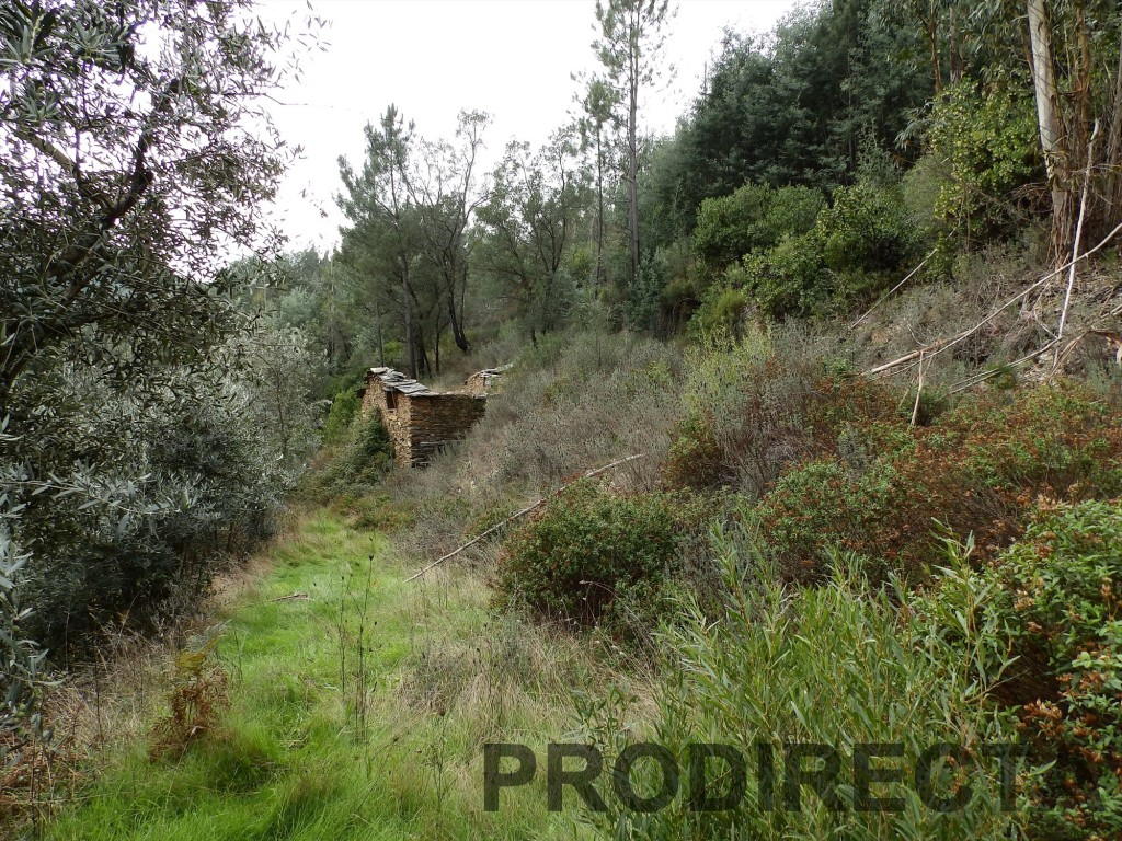 Large valley for sale