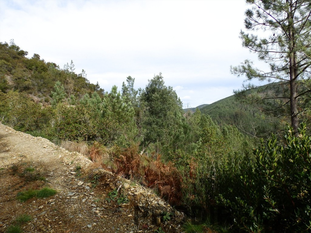 riverside valley for sale in Central Portugal