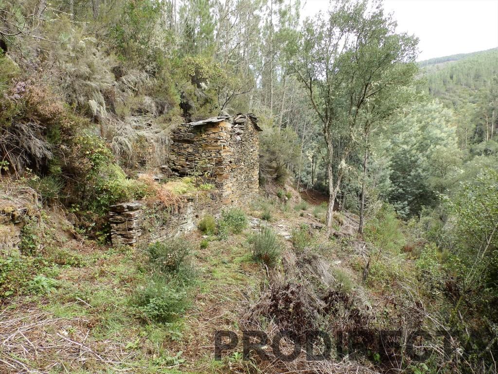riverside property for sale