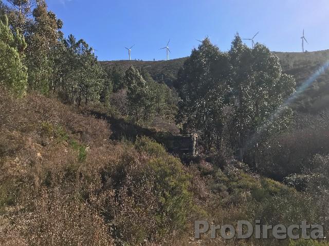 Farm for sale Gois Gold mining Archaeologist interest