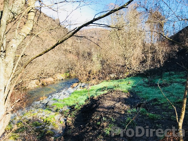 River property Góis for sale
