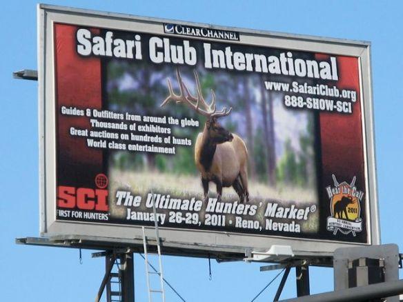 Safari Club Jan 26 2011