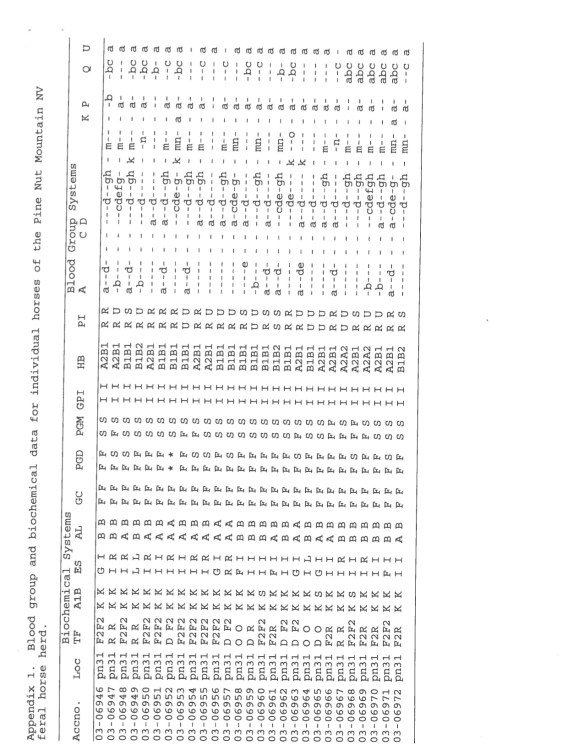PM Pine Nut genetic Viability P13 Oct 2009