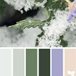 'winter tones' courtesy of designseeds.com