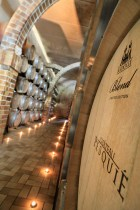The cellar of Chateau Pesquie