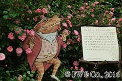 ピーターラビット(TM)とバラの世界(イメージ)