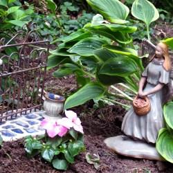 Garden Psalmboxkeys Blog