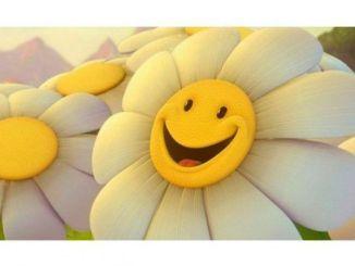 Consejos para Aprender a Ser Feliz