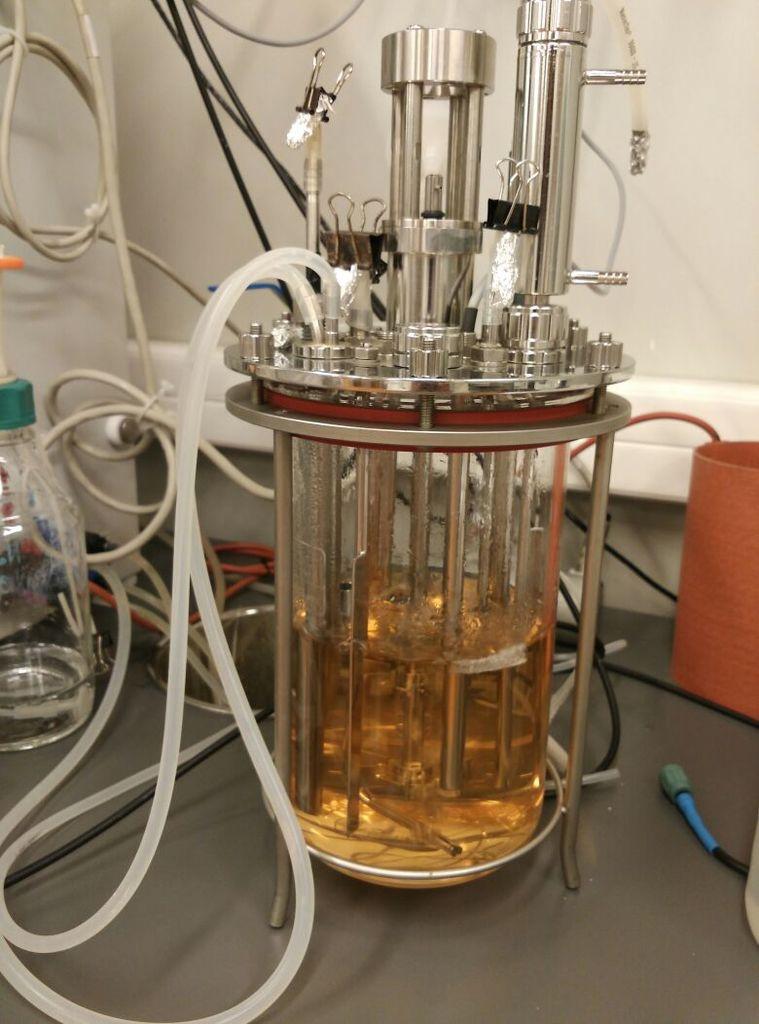 produccio-n-de-butanol-en-reactor-de-tanque-agitado
