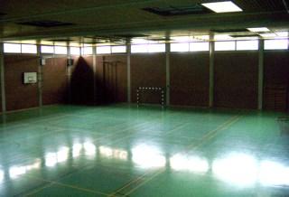 3-fach Halle Polizeischule