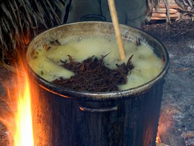 A photo of the boiling ayahuasca brew taken by Rak Razam.